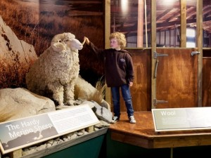 New Zealand Alpine & Agriculture Encounter - Methven Heritage Centre
